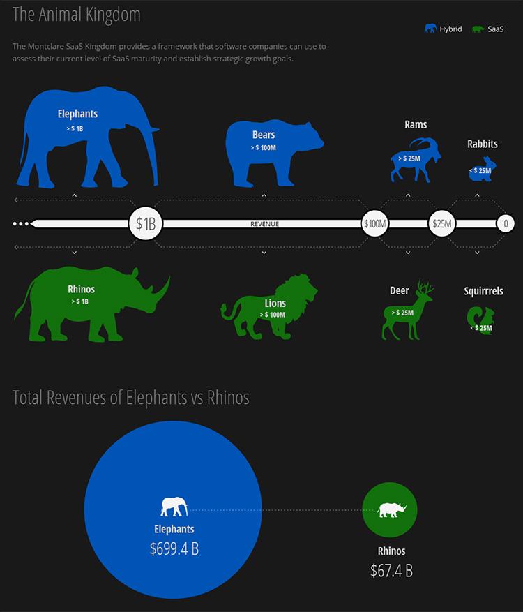 saas-250-animals.jpg