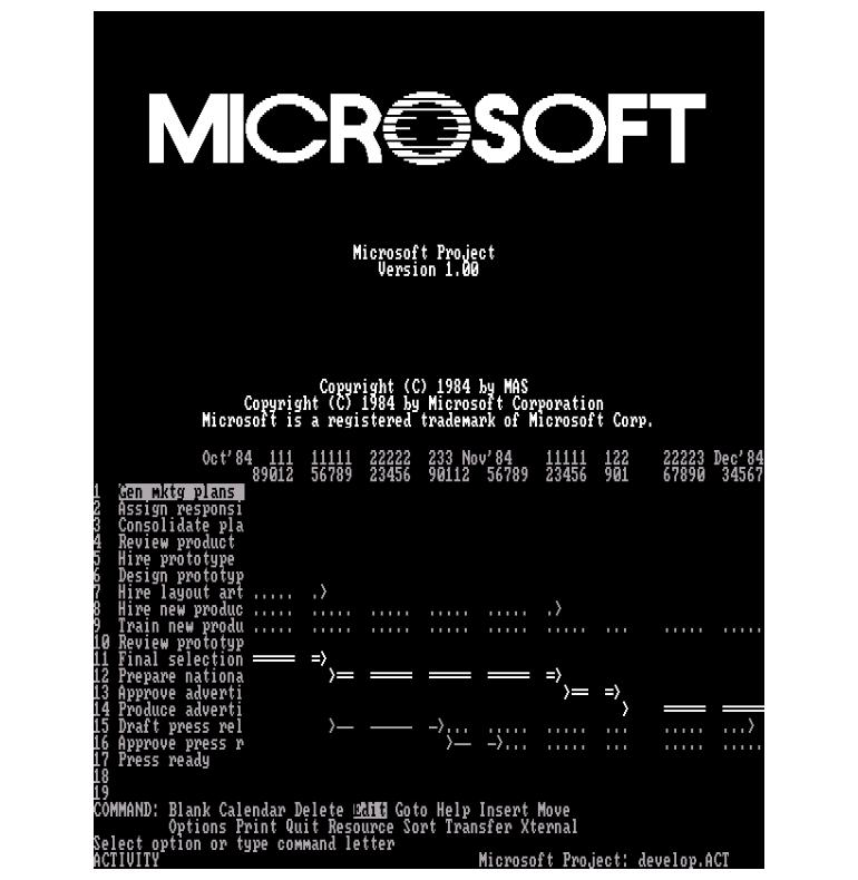 microsoftprojectthen2.png