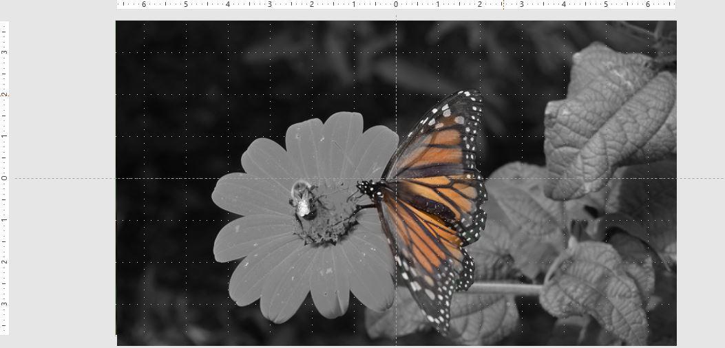 ppspotlight-e.jpg